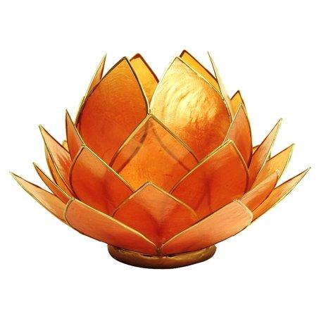 lotus ljuslykta snäckskal